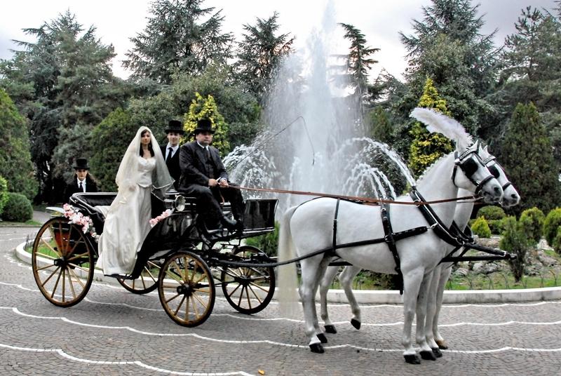 Matrimonio In Carrozza : Foto matrimoni spose in carrozza matrimonio